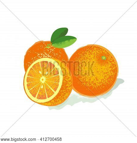 Orange With Whole Leaves And Slices Of Oranges. Vector Illustration Of Hand Drawing In The Style Of