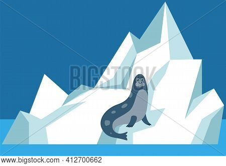 Seal Sits On Ice Floe And Relax. Wild Animal Resting On Glacier In Antarctica Vector Illustration