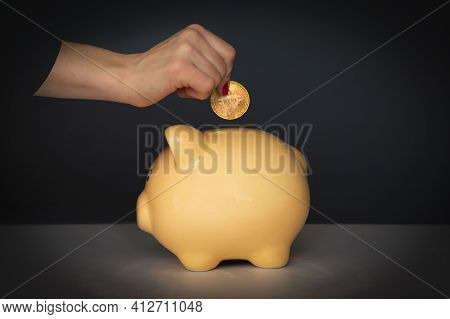 Crop Woman Putting Coin In Piggy Bank