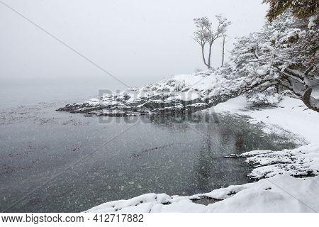 Tierra Del Fuego National Park In Winter. Tierra Del Fuego Is A National Park On The Argentine Part