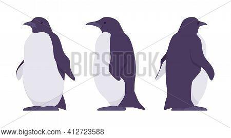 Penguin Set, Cute Large Aquatic Flightless Seabird. Water Life, Ornithology And Birdwatching Concept