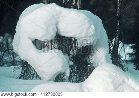 Snow Mushroom; Snowcap Covered With Frost In The Arctic Forest
