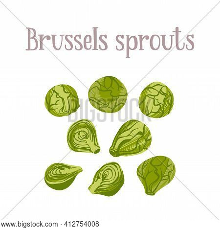 Fresh Young Brussels Sprouts. Healthy Nutrition Product.