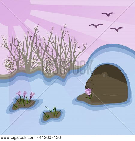 Spring Illustration Of Landscape, Bear Climbs Out Of The Den And Sniffs The First Flowers (crocuses)