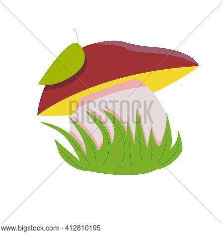 Mushroom Grows In The Grass. White Mushroom, Boletus In Cartoon Style. Element For Kids Illustration