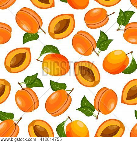Vector Pattern From Apricots.bright Apricots In A Seamless Pattern On A White Background.