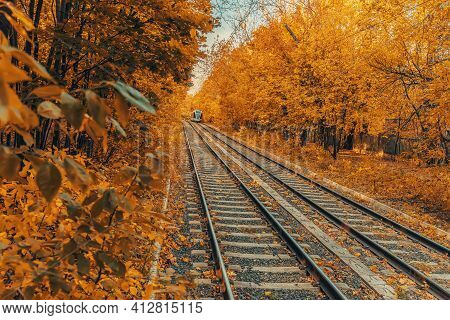 Natural Autumn Landscape Of Golden Park, Leaf Fall. Tram Rails Going Into The Distance, Tram On The