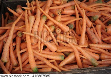 A Collection Of Red Carrots At A Traditional Market. Fresh Vegetables Ready To Be Sold For Consumpti