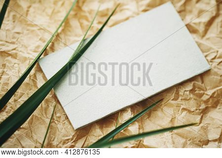 White Business Card Flatlay On Brown Parchment Paper Background And Green Exotic Leaf, Luxury Brandi