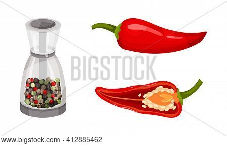 Red Pepper As Ripe Vegetable And Organic Food With Mixed Peppercorn Vector Set
