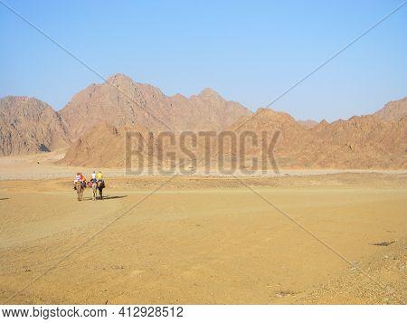 Camel Travelers, Camel Ride On A Desert Safari In Egypt. Beautiful Egypt's Desert Landscape With Cam