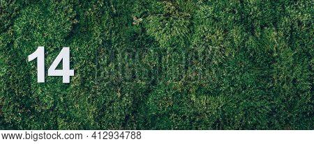 Ecology, Zero Waste. Green Grass, Digit Fourteen. Birthday Greeting Card With Inscription 14. Annive