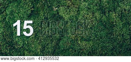 Ecology, Zero Waste. Green Grass, Digit Fifteen. Birthday Greeting Card With Inscription 15. Anniver