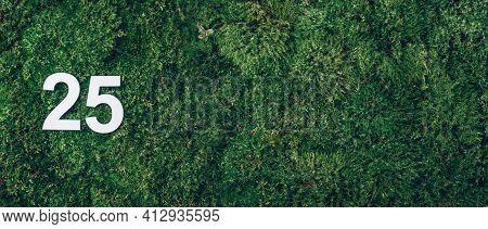 Green Grass, Digit Twenty-five. Birthday Greeting Card With Inscription 25. Anniversary Concept. Ban