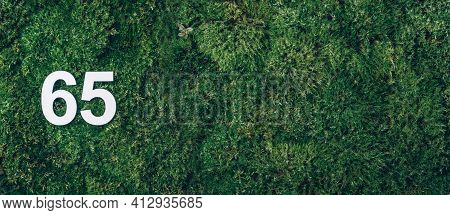 Green Grass, Digit Sixty-five. Birthday Greeting Card With Inscription 65. Anniversary Concept. Bann
