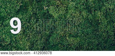 Ecology, Zero Waste. Green Grass And Digit Nine 9. Birthday Greeting Card. Anniversary Concept. Bann