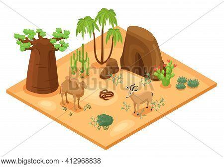 Desert Landscape With Cacti Palms Rocks Camel Snake And Gazelle Isometric Vector Illustration
