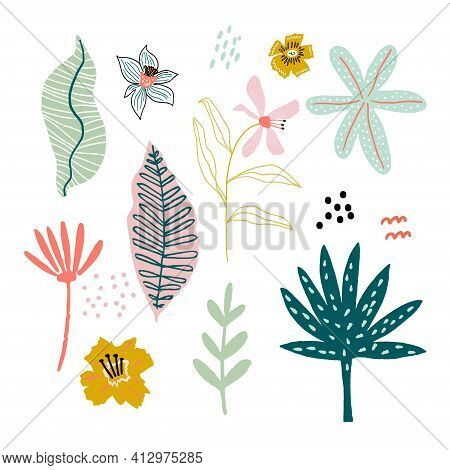Tropical Leaves Jungle Flat Illustrations Set. Jungle Hand Drawn Clipart. Tropical Foliage Separate.