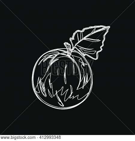 Peach, Apricot. Chalk On A Blackboard. White On A Black Background. Vegan Icon Set With Fruits And B