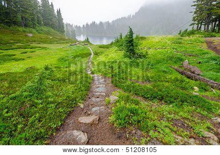 Fragment of foggy and rainy Bagley Lakes Trail at Mount Baker Park in Washington, USA