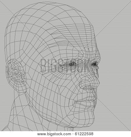 Man Wireframe Illustration