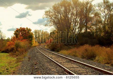 Linha férrea através de folhagem de outono