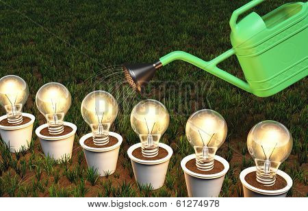 Row Of Light Bulbs In Pots Is Watered