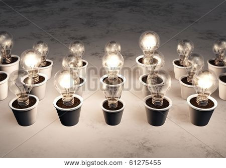 Rows Of Light Bulbs