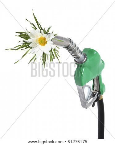 Green gas nozzle with hose and daisy flower on white