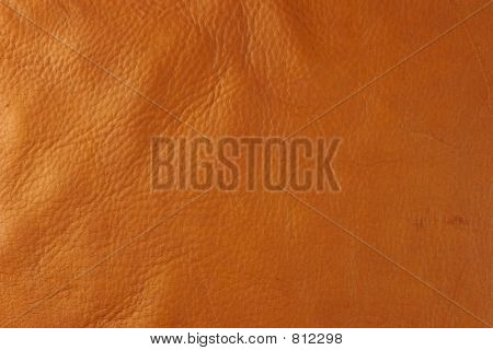 Tan leather small