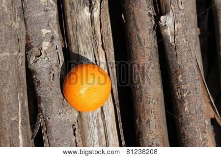 Natural orange in men hand with white background