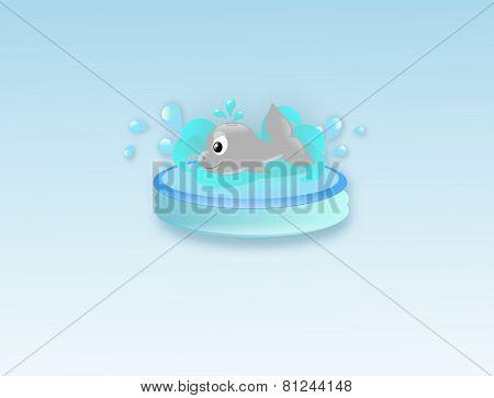 Cute Whale In Water Pool