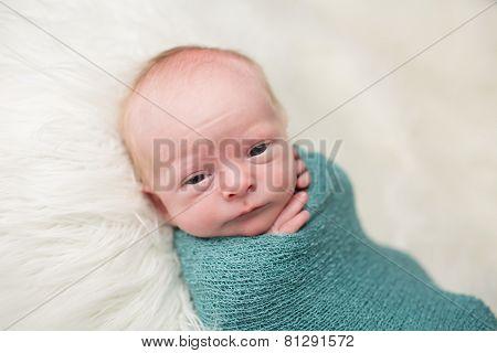 Newborn Swaddled