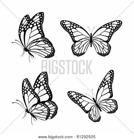 Set of Silhouette Black Butterflies Isolated for Spring