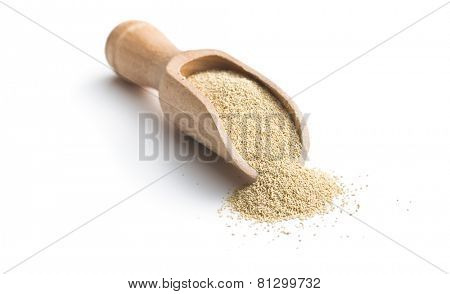 dry yeast in scoop on white background