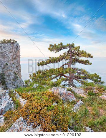 Rocky seascape of Crimea, Ukraine