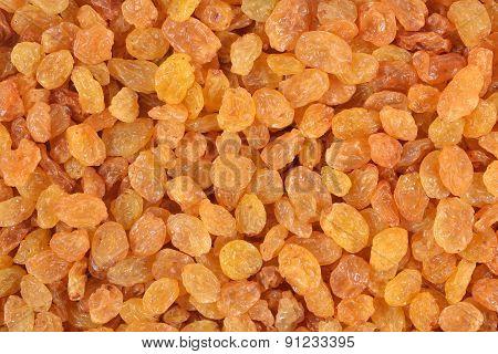 Golden Raisins Background