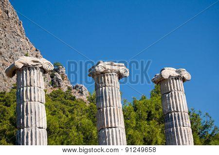 Ancient Temple Columns Background, Priene