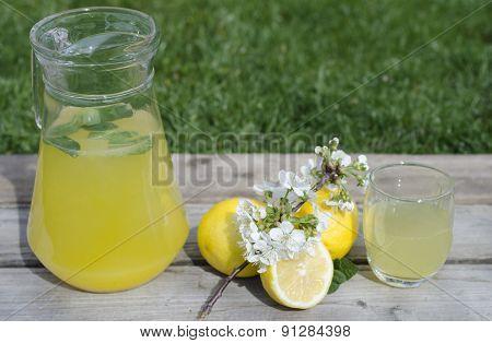 Lemonade With Mint And Lemons