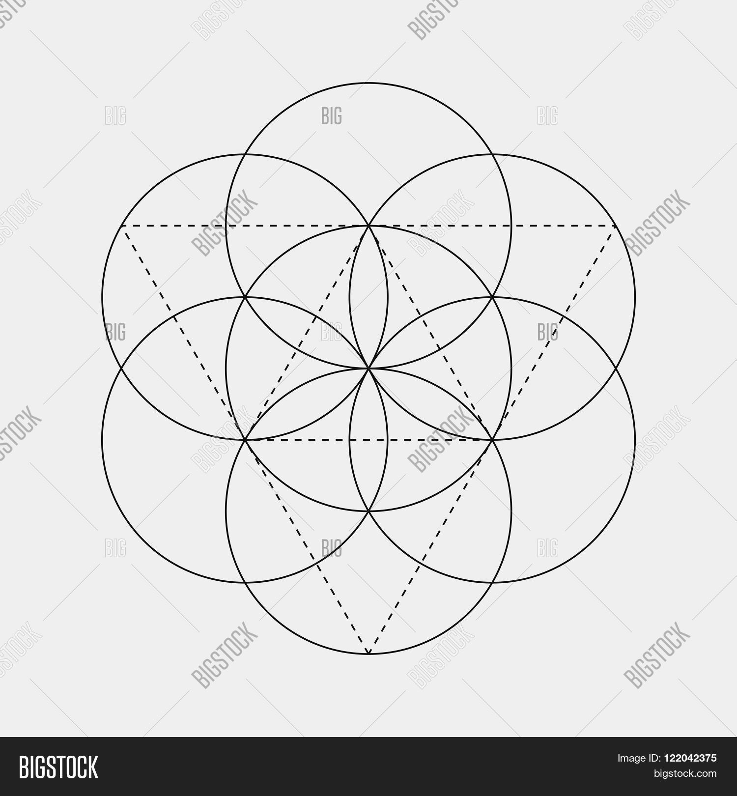 Flower of Life sign. Vector isolated Geometric Symbol with circles. Metatron's Cube. Sacred