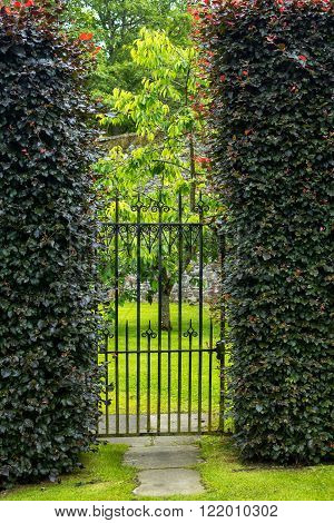 Beautiful old garden gate with hedges, summertime