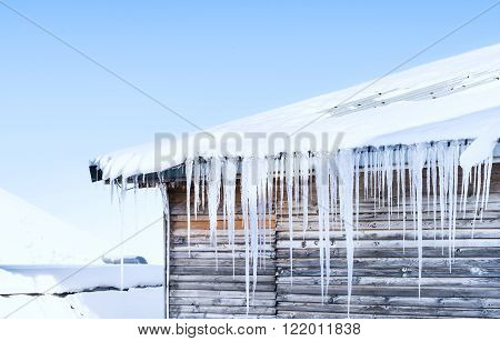 Long Icicles Hanging