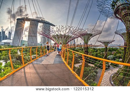 SINGAPORE - JULY 13: Visitors enjoying the sunset view atop the Supertree Grove at Gardens by the Bay July 13 2015. These man-made trees of up to 16 storeys in height has a connected 128-metre long walkway. They have become iconic symbols of Singapore
