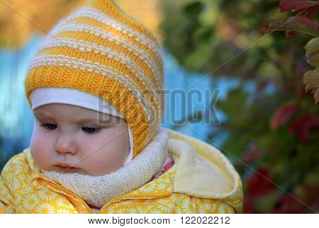 Portrait Of Cute Baby Girl With Autumn Leaves