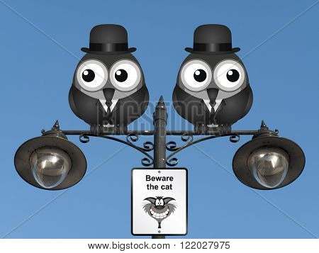 Comical beware the cat sign with watchful birds perched on a lamppost against a clear blue sky