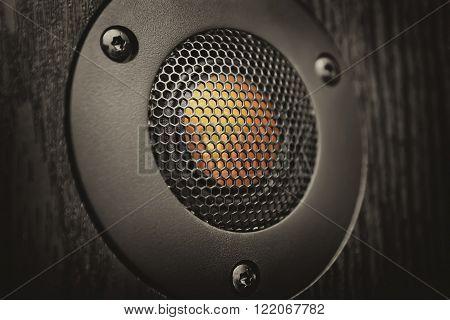 Tweeter close-up. Element of hi-fi speaker system