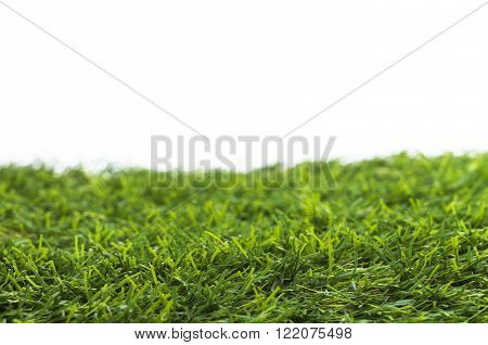 Image shows green grass isolated on white background