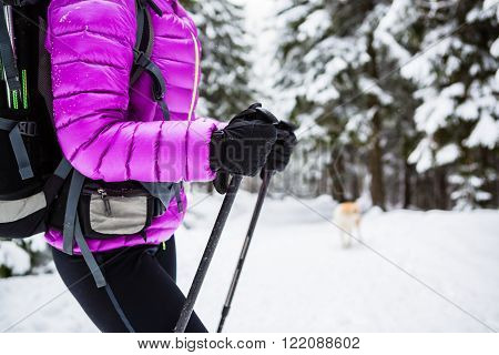 Winter trek in white woods. Woman hiking trekking in winter forest with dog. Travel recreation fitness and healthy lifestyle outdoors in beautiful snowy nature. Motivation and inspirational white winter landscape.