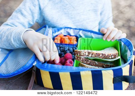 schoolboy enjoying recess and eating healthy lunch