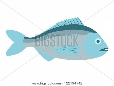 Dorado fish vector illustration. Dorado fish on white background. Dorado fish vector. Dorado fish illustration. Dorado fish isolated vector.